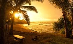 あなたには人生を変える力がある!~あなたの知らないハワイに出会う! vol.17