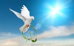 光のメッセージ~幸運を紡ぐ方法を伝授<br>~<守護天使からのサポート>