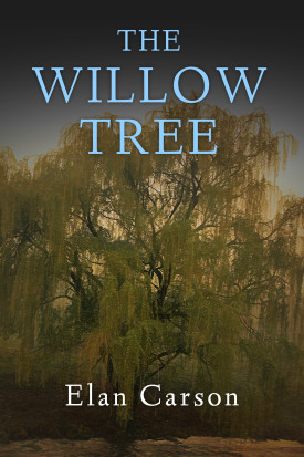 Depression in Fiction | The Willow Tree Book Cover