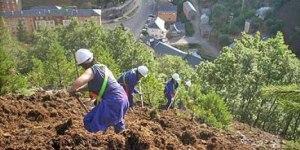 Imagen de la restauración de escombreras realiza por Ciuden Vivero en Tremor de Arriba