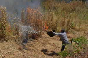 Foto de archivo de uno de los últimos conatos de incendio en Ponferrada en la última semana. / QUINITO