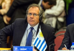 Uruguay's Foreign Minister Luis Almagro is pictured during the VII Regular Meeting of the Council of Heads of State and Government of UNASUR being held in Paramaribo, Surinam, on August 30, 2013.  AFP PHOTO / JODY AMIET