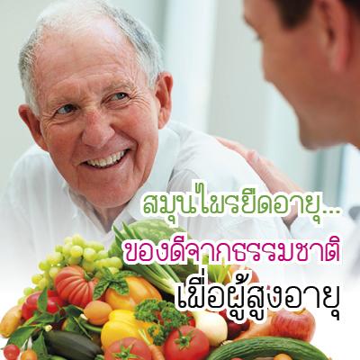 สมุนไพรยืดอายุ...ของดีจากธรรมชาติเพื่อผู้สูงอายุ