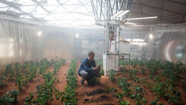 The Martian Kartoffelanbau