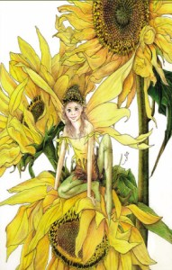 Sunflower fairy image