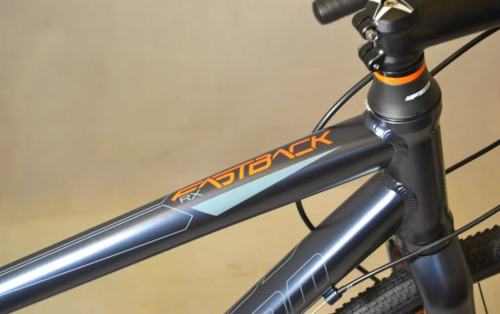 5891 Schwinn Fastabck RX 08