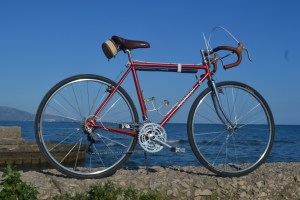 6493 Peugeot Anjou Passepartout 37