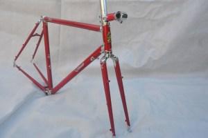 6719 Elessar bicycle 96