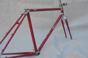 6724 Elessar bicycle 101
