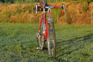 6876 Elessar bicycle 225