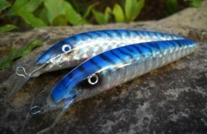 ALALU Sgombro blu- particolare