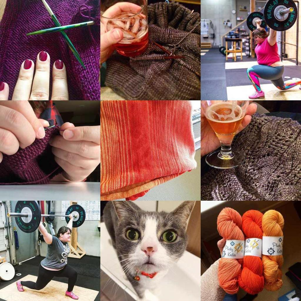 2016 was full of knitting weightlifting a cat and morehellip
