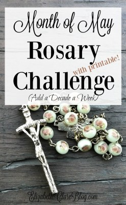 Rosary Challenge for the Month of Mary