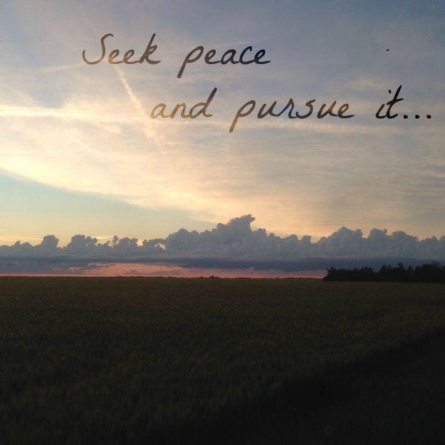 seek peace pursue it find balance elizabeth cravillion