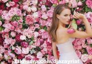 حائط الورد صيحة جديدة في أعراس ربيع 2015