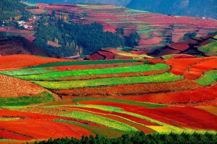 dongchuan-red-land2