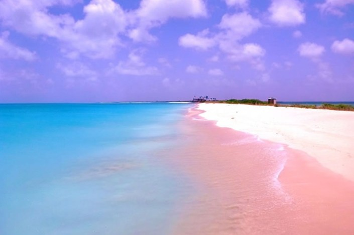 Pink Beach of Harbor Island – Bahamas