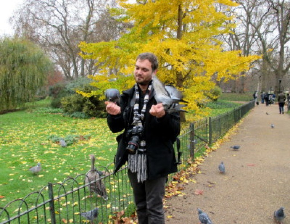 A man in St. James's Park who literally has birds eating from his hands.