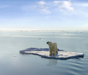 Images like this of a lone Polar Bear floating in the Arctic are not faked. How can they be denied?
