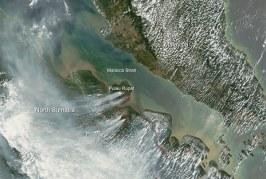 Haze in South Sumatra drops from hazardous level to unhealthy range
