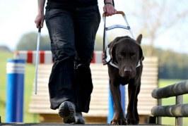 Anche ciechi e ipovedenti possono salvare vite!