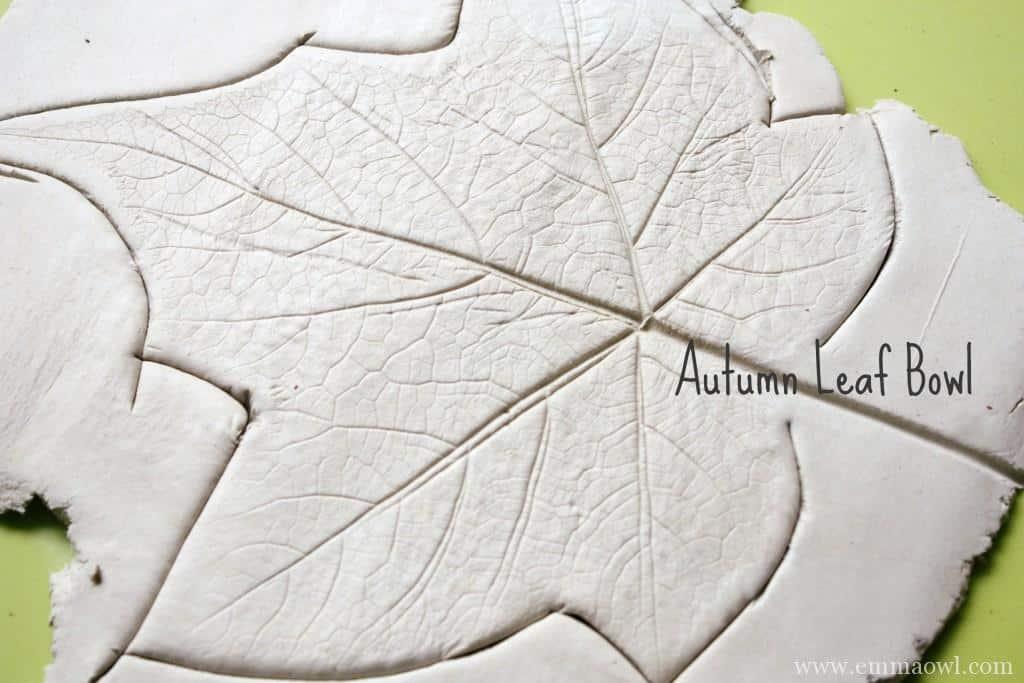 Autumn-Fall Leaf Bowl