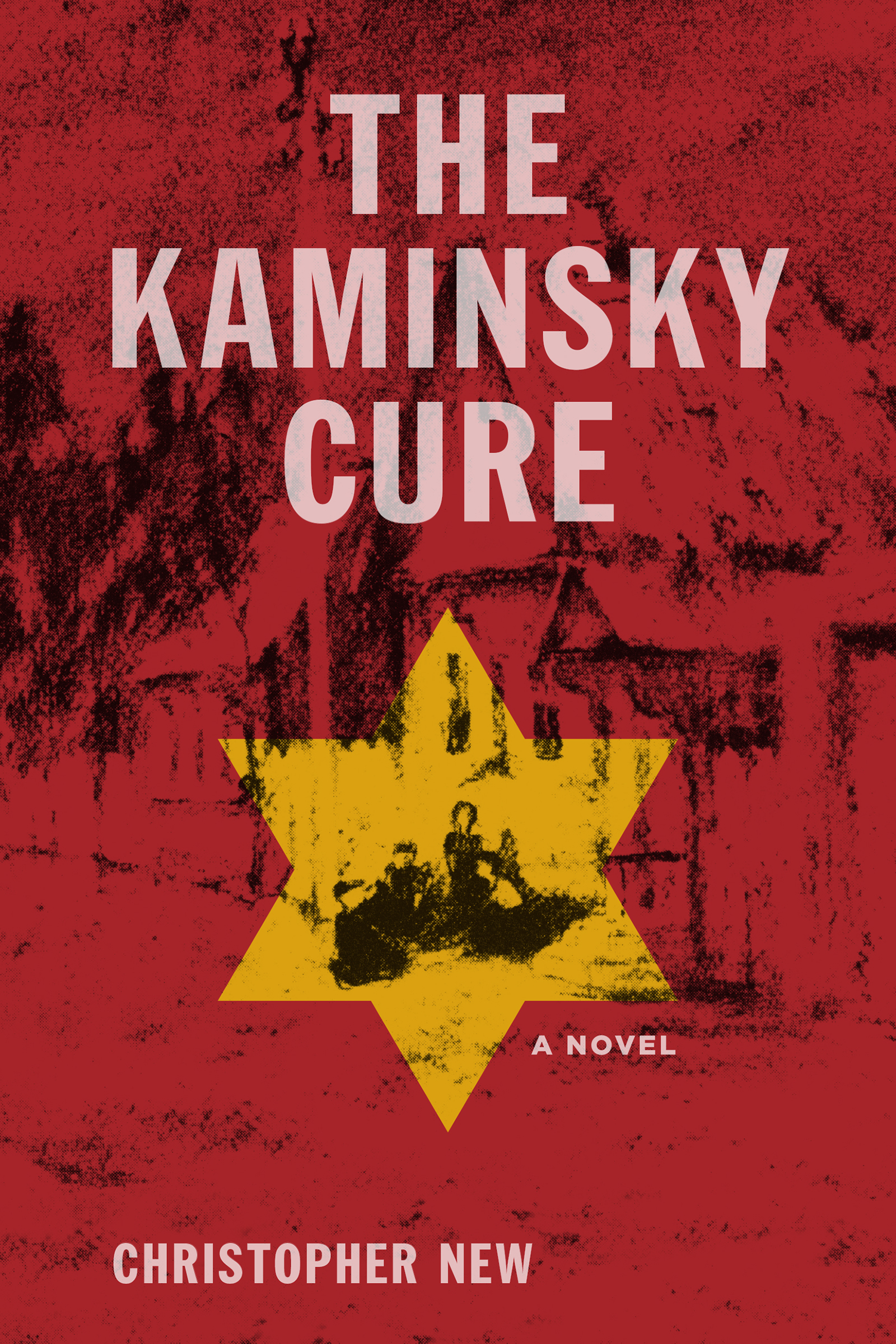 the kaminsky cure cover comp (1) (1)
