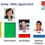 Encuesta Breña, IDICE – Agosto 2014