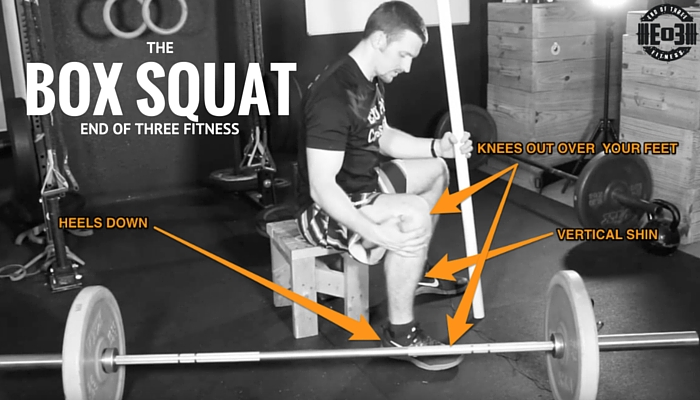 The box squat adding a tool to toolbox
