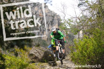 wildtrack