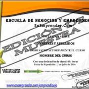Diploma premium