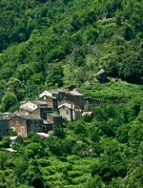 Village-de-Campodonico-en-Corse