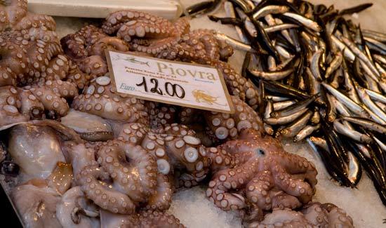 poulpe-marché-rialto-venise