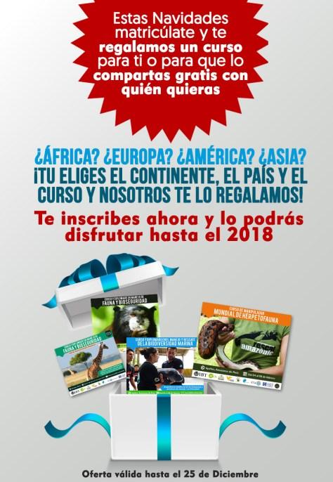 Campaña de Navidad Cursos y Diplomados del UIBT.