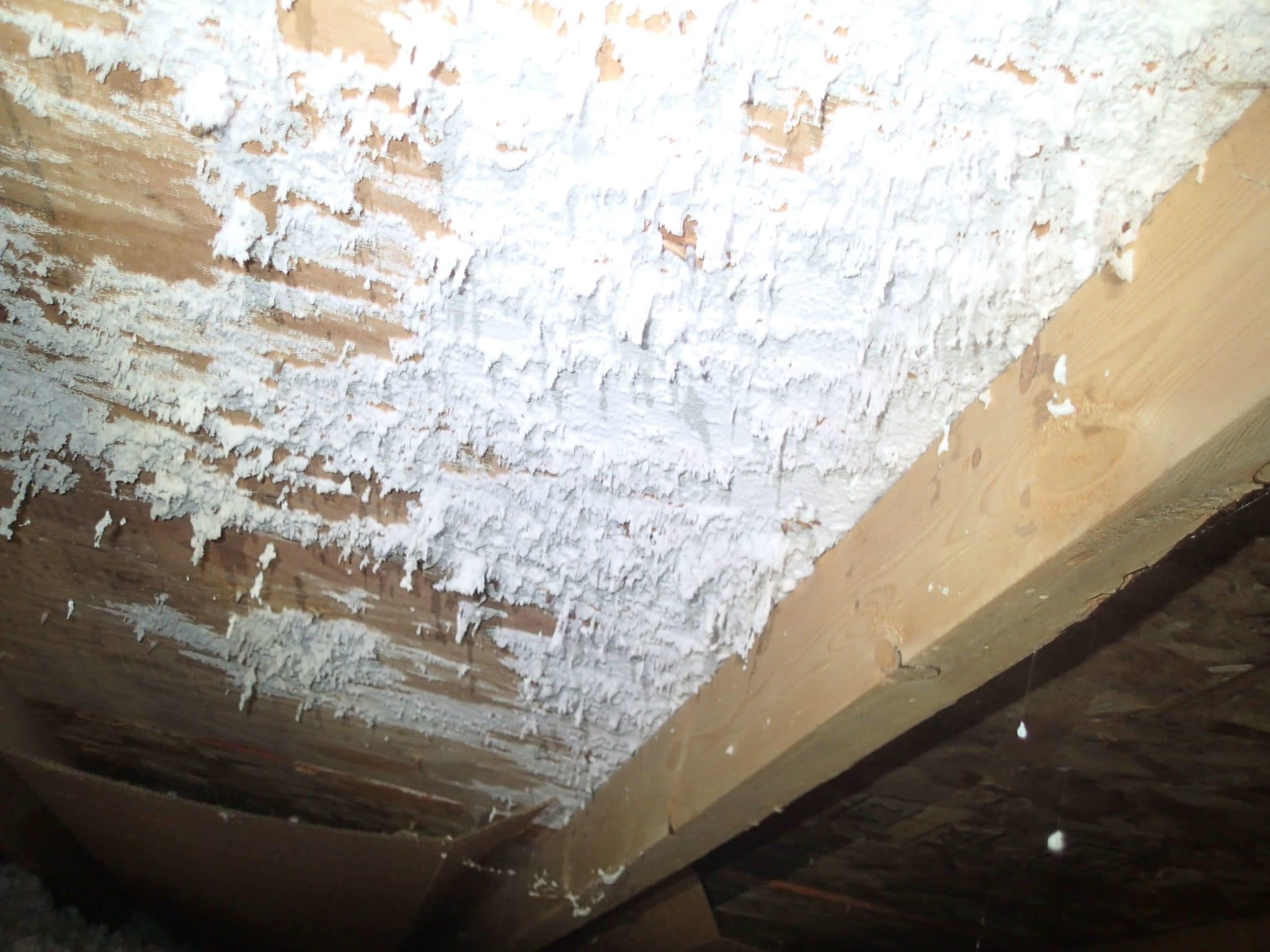 Radiant M Growth On Attic M On Attic Roof Sheathing Environix M On Wood Health Risks M On Wood Deck houzz-03 White Mold On Wood