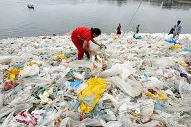 Plastic Shopping Bags & Environmental Impact
