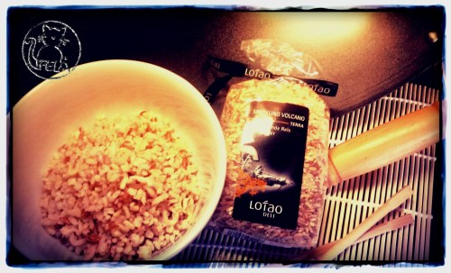 Lotao Reis (01)