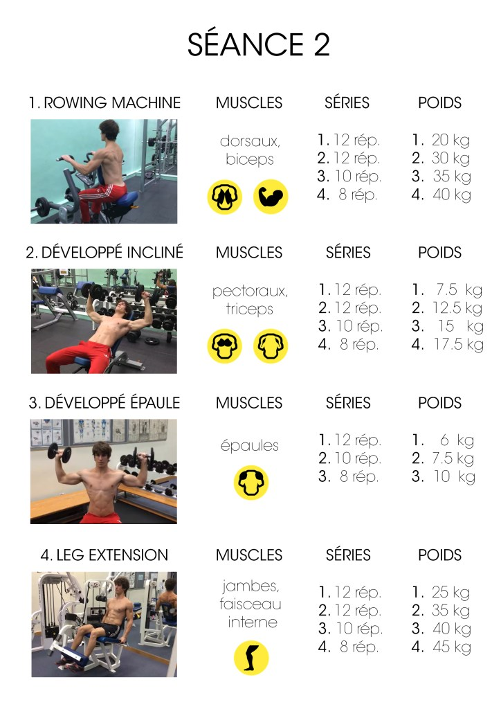 Guide programme de musculation p2 e programme musculation for Guide musculation