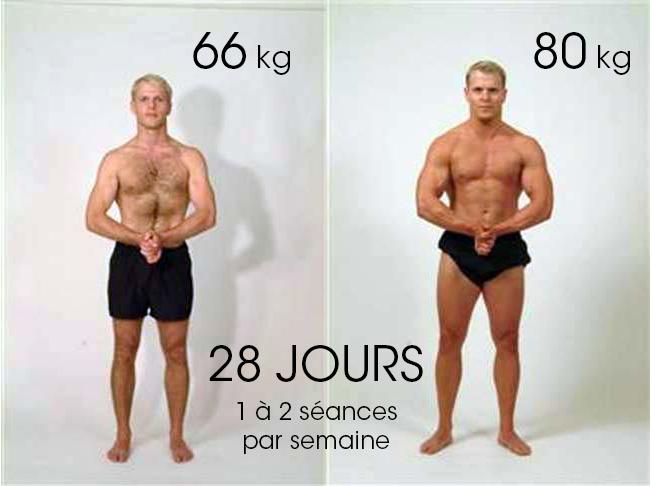 cours module 1 e programme musculation