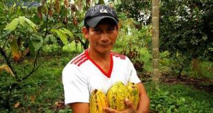 Chocolat d'Equateur 4