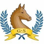 Global Showing - The Online Horse Show @ Global Showing - The Online Horse Show |  |  |