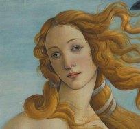 Venere-di-Botticelli-volto-viso