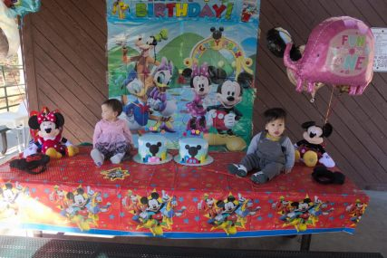 Sam and Stella 1st Bday - 2016-11-13T12:58:23 - 018