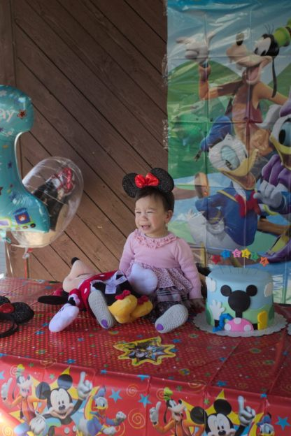 Sam and Stella 1st Bday - 2016-11-13T12:59:57 - 051