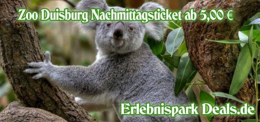 zoo_duisburg_nachmittagsticket