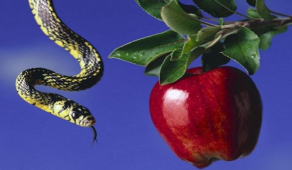 Por que Deus permite tentações em nossa vida?