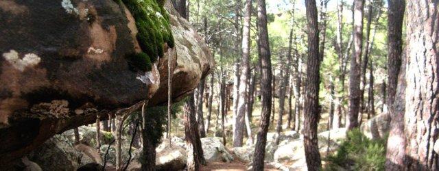 El sector de escalada en boulder Albarracín esta pasando por una nuevaregulación y normativa, que deberán ser acatadas por todos los escaladores. La normativa de […]