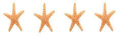 4 STARFISH