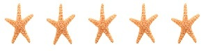 5 STARFISH