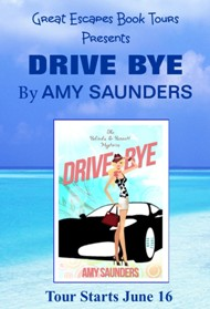 Drive-Bye Book Blog Tour